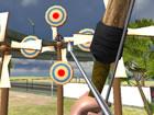 Bogenschießen ist eine Schießdisziplin mit einer der größten Traditionen al