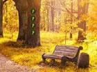In diesem Fluchtspiel bist du im blütengelben Wald gefangen. Sie müss