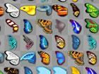 In diesem interessanten Match-Flash-Spiel musst du ein paar gleiche Schmetterli