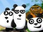Diese 3 Pandas wurden von Piraten gefangen! Helfen Sie ihnen, zu entkommen das