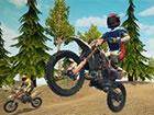 Dirt Bike: Enduro Racing ist ein 3D Offroad motorrad Rennspiel, das sich ü