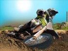 Testen Sie Ihre Fähigkeiten mit dieser neuen Dirt Bike Spiele online und zeige