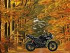 Erntedank Wald Flucht ist ein weiteres Point-and-Click-Escape-Spiel, das von Fu