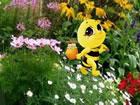 In diesem Fluchtspiel kam Fliegen Fee Biene, um Honig in diesem Fantasiewald zu