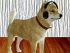 Dog Room Escape ist ein Point-and-Click-Spie...