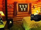In diesem Fluchtspiel bist du im Haus der Halloween-Katze gefangen. Keiner hilf
