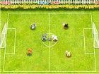 Sogar Haustiere will schönen Fußball spielen. Gewinnen Sie ein Tor gegen dein