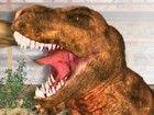 Ein wütender Tyrannosaurus Rex wird zerreißen...