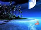 In diesemMitternachts Insel Junge Fluc...