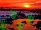 In diesem Natur Sonnenuntergang Land Fluchts...