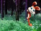 In diesem Fluchtspiel bist du in den Wald ge...