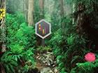 In diesem Parky Wald Fluchtspiel bist du im Parkwald gefangen. Keiner in der N&