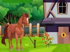 Dieses süße Ponypferd ist in einer Scheune gefangen und kann von dor