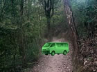 Ein Fluchtspiel, das Sie in einen Regenwald ...