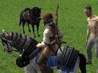 Reiten Simulator ist ein Shooter-Spiel, in dem Sie ein echter Cowboy werden und