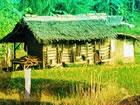 In diesem Fluchtspiel ist ein Schatz in dieser Dorfhütte versteckt. Sie m&
