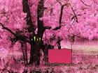 In diesem coolen Fluchtspiel bist du in einem schönen Blütenwald gefa