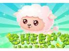 Diese pelzigen, niedlichen Schafe Sie wollen ni...