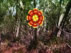 In diesemSpekulation Wald Fluchtspiel bist du im Spekulationswald gefange