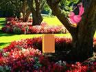 In diesemStil Garten Flucht spiel bist du in einen Garten im Fantasy-Stil