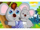 Das schöne Koala, die, das kooki auf Eucalypt lebt, Blätter als jeder Koalas,