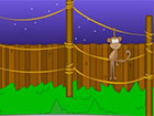 Toon Escape Zoo ist ein weiteres Point & Click-Escape-Spiel, das von Selfde