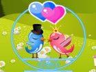 Nette Liebe Vögel wollen einige Zeit damit verbringen, miteinander reden an ei