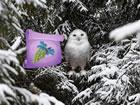 Winter Wonderland Forest Adventure ist ein neues Waldfluchtspiel, das von Ainar